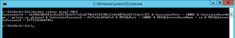 windocksnewcontainer