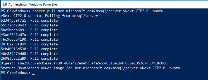 Running SQL Server 2019 CTP in a Docker container | DBA From The Cold